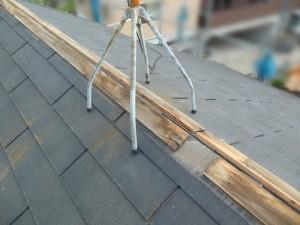 棟板金交換工事前、貫板に雨水が染みている