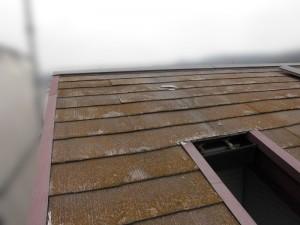 屋根塗装工事前、コケが生え塗装は剥げている