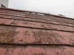 屋根の板金交換・塗装工事前