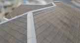 屋根に苔が生えてくる原因