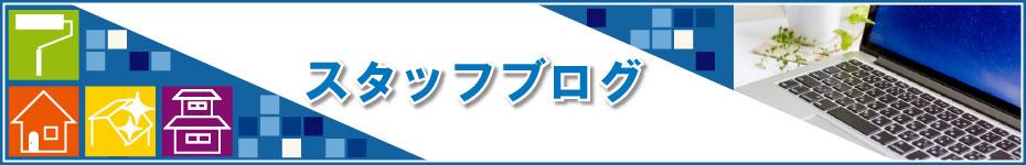 staff-blog-banner