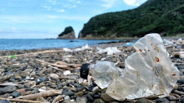 プラスチックゴミが問題に